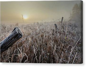 Barbed Wire Fences Canvas Print - First Frost by Dan Jurak