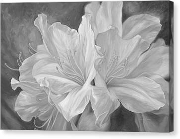 Fleurs Blanches - Black And White Canvas Print by Lucie Bilodeau