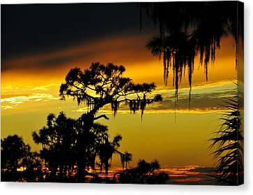 Tropical Sunset Canvas Print - Central Florida Sunset by David Lee Thompson