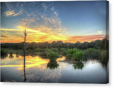 Florida Wetlands Sunset Canvas Print by Allan Einhorn