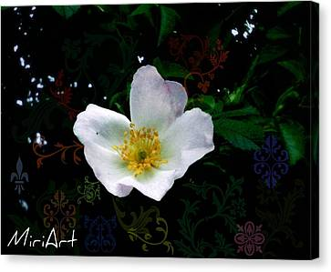 Canvas Print featuring the photograph Flower Deco by Miriam Shaw
