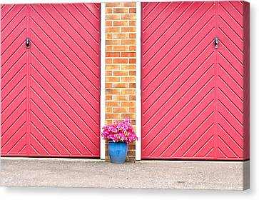 Flower Pot Canvas Print by Tom Gowanlock