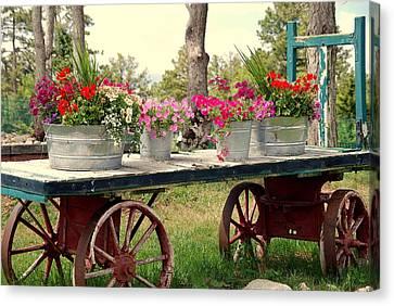 Flower Wagon Canvas Print by Susanne Van Hulst