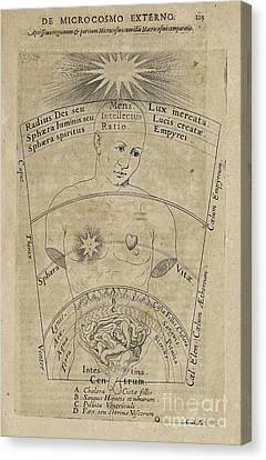 Fludds De Microcosmo Externo, 1600s Canvas Print by Folger Shakespeare Library