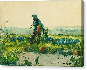 For To Be A Farmer's Boy Canvas Print