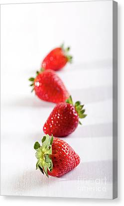 Four Strawberries Canvas Print - Four Juicy Strawberry On The Table by Piotr Marcinski