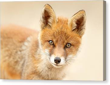 Foxy Face Canvas Print by Roeselien Raimond