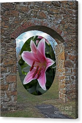 Framed In Stone Canvas Print by Robert Sander