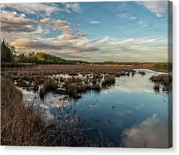 Franklin Parker Preserve Landscape Canvas Print by Louis Dallara