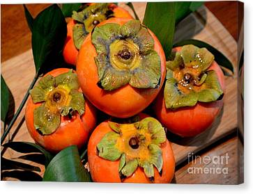 Fresh Fuyu Persimmons Canvas Print by Mary Deal