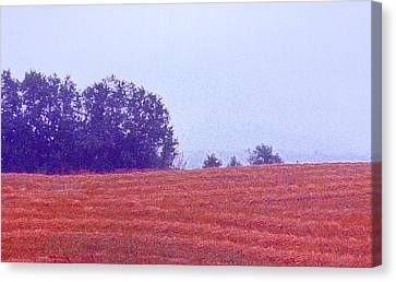 Canvas Print featuring the photograph Freshly Cut Hay Ae by Lyle Crump