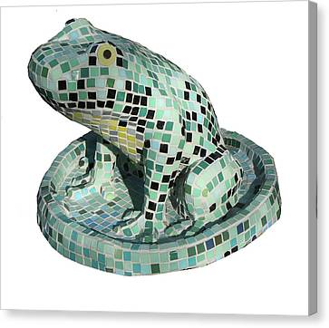 Frog Canvas Print by Katia Weyher