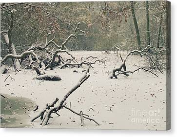 Frozen Fallen Canvas Print by Andy Smy