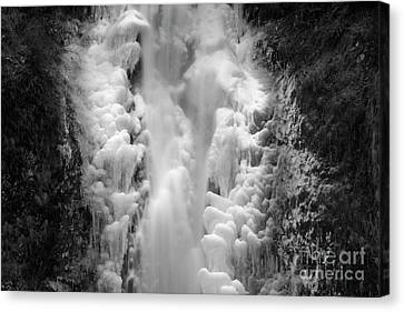 Frozen Multnomah Falls Canvas Print