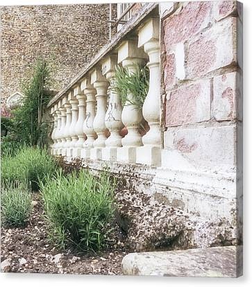 Garden Wall Canvas Print by Tom Gowanlock