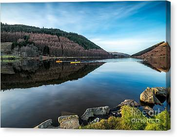 Fall Grass Canvas Print - Geirionydd Lake by Adrian Evans