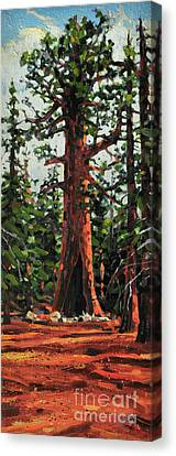 General Sherman Canvas Print by Donald Maier