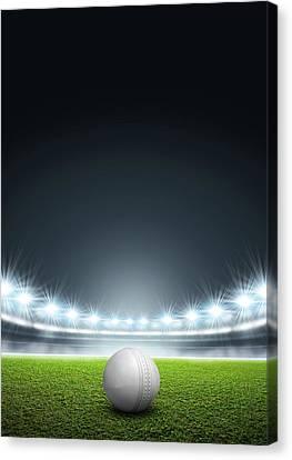 Generic Floodlit Stadium With Cricket Ball Canvas Print by Allan Swart