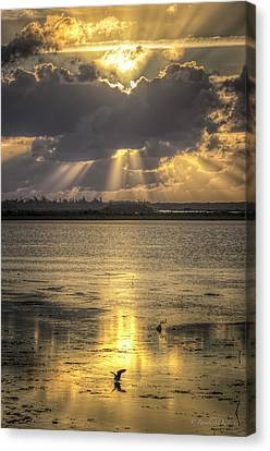 God's Golden Glory Canvas Print by Ronald Kotinsky