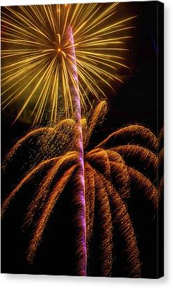 Golden Fireworks Canvas Print