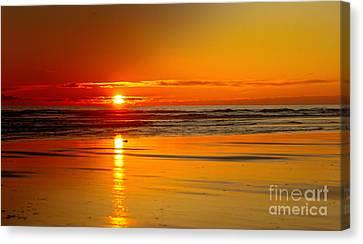 Golden Sunset Canvas Print by Robert Bales