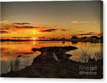 Golden View Canvas Print by Robert Bales