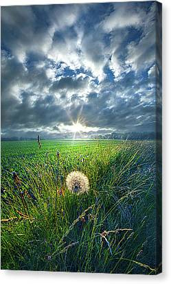 Good Day Sunshine Canvas Print by Phil Koch