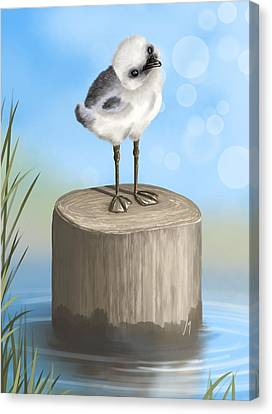Good Morning Canvas Print by Veronica Minozzi