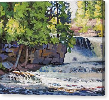 Gooseberry Falls Canvas Print by Larry Seiler