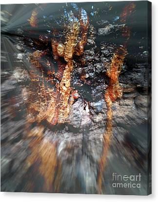 Goree Canvas Print - Goree Tree Texture by Fania Simon