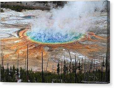Grand Prismatic Springs In Yellowstone National Park Canvas Print by Pierre Leclerc Photography
