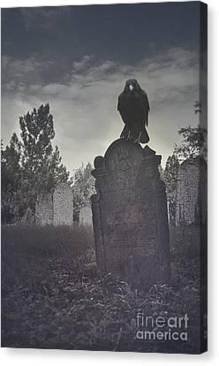 Graveyard Canvas Print by Jelena Jovanovic