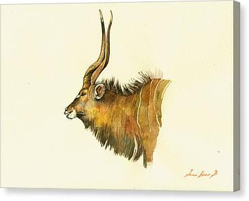 Greater Kudu Canvas Print by Juan  Bosco