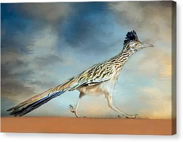 Greater Roadrunner Canvas Print by Barbara Manis
