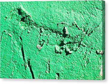 Green Background Canvas Print