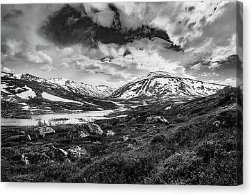 Canvas Print featuring the photograph Green Carpet Under The Cotton Sky by Dmytro Korol