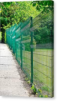 Green Fence Canvas Print by Tom Gowanlock