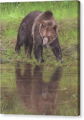 North American Wildlife Canvas Print - Grizzly Bear At Water's Edge by David Stribbling