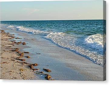 Gulf Of Mexico Beach Canvas Print by Steven Scott