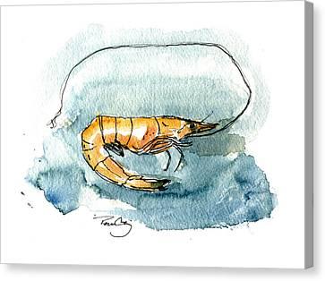 Gulf Shrimp Canvas Print