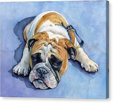 Bulldogs Canvas Print - Gumdrop by Galen Hazelhofer