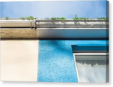 Drain Canvas Print - Gutter by Tom Gowanlock