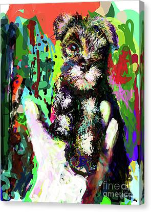 Standard Schnauzer Canvas Print - Harley In Hand by James Thomas