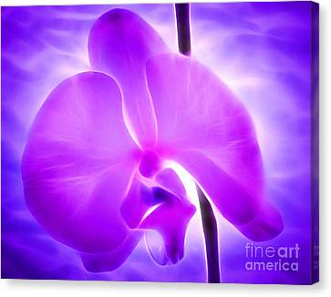 Healing Light Canvas Print