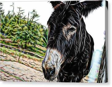 Hi Canvas Print by Marvin Blaine