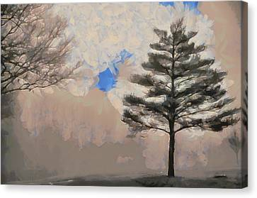 Canvas Print featuring the mixed media Hickory by Trish Tritz