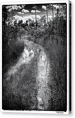 Hiking Trail  Canvas Print by Rudy Umans