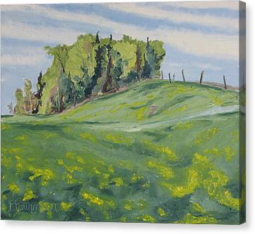 Hills Forest And Dadelions  Canvas Print by Francois Fournier