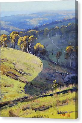 Hillside Shadows Canvas Print