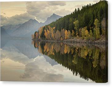 Canvas Print featuring the photograph His Reflections by Al Swasey